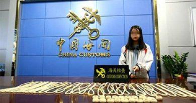 Việt Nam đang xác minh vụ việc bé gái 13 tuổi bị Trung Quốc bắt vì buôn lậu ngà voi
