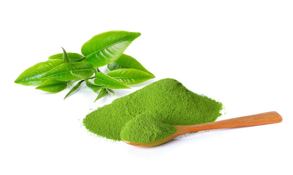Cách trị mụn với bột trà xanh