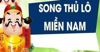 Song thủ lô miền Nam là gì - Nuôi lô song thủ khung 3 ngày Miền Nam